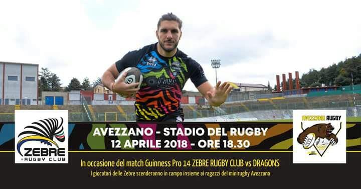 zebre-az rugby